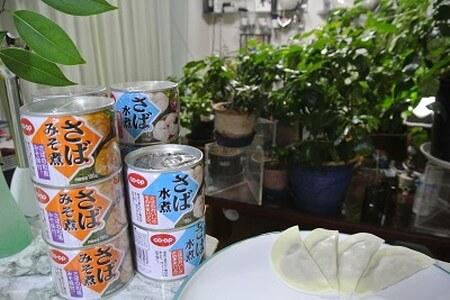 canned-mackerel