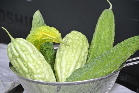 bitter-gourd-plant-2