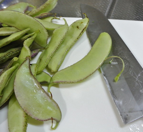 sengoku-beans-3