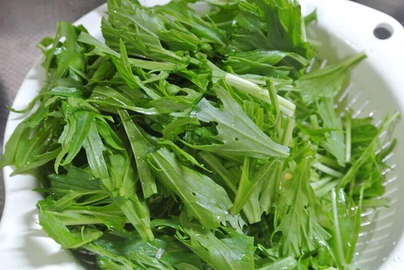 mizuna-green-1